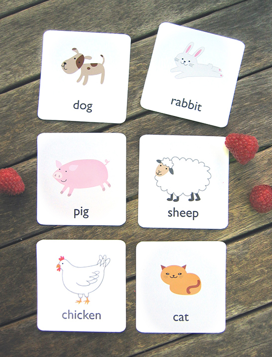 graphic about Animal Cards Printable called Printable Animal Flash Playing cards - Mr Printables